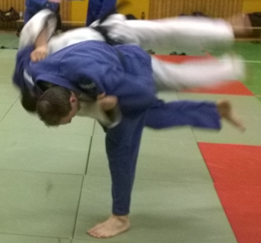 Judoka Stefan Kley, Version 9.0